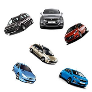 Peugeot Cars Memory
